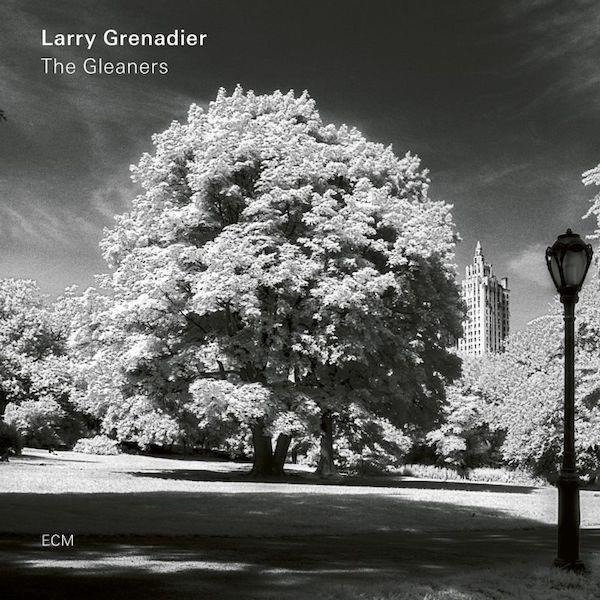 LARRY GRENADIER The Gleaners LP